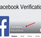 cach-dang-ky-dau-tich-xanh-facebook-1